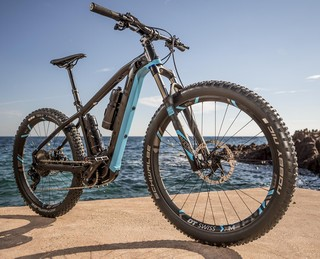 Bike Rental Park Albatros San Vincenzo ::